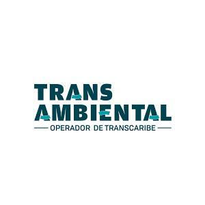 trans-ambiental